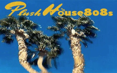 Plush House 808s Vol 9 Chill Mix Track Listing