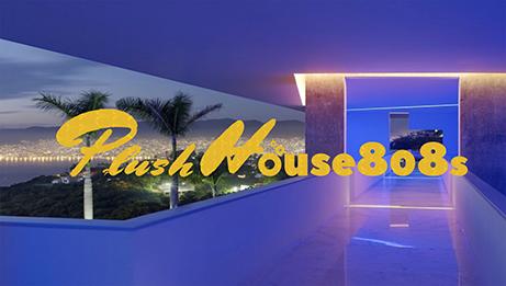 Plush House 808s Vol 11 Chill Mix Track Listing